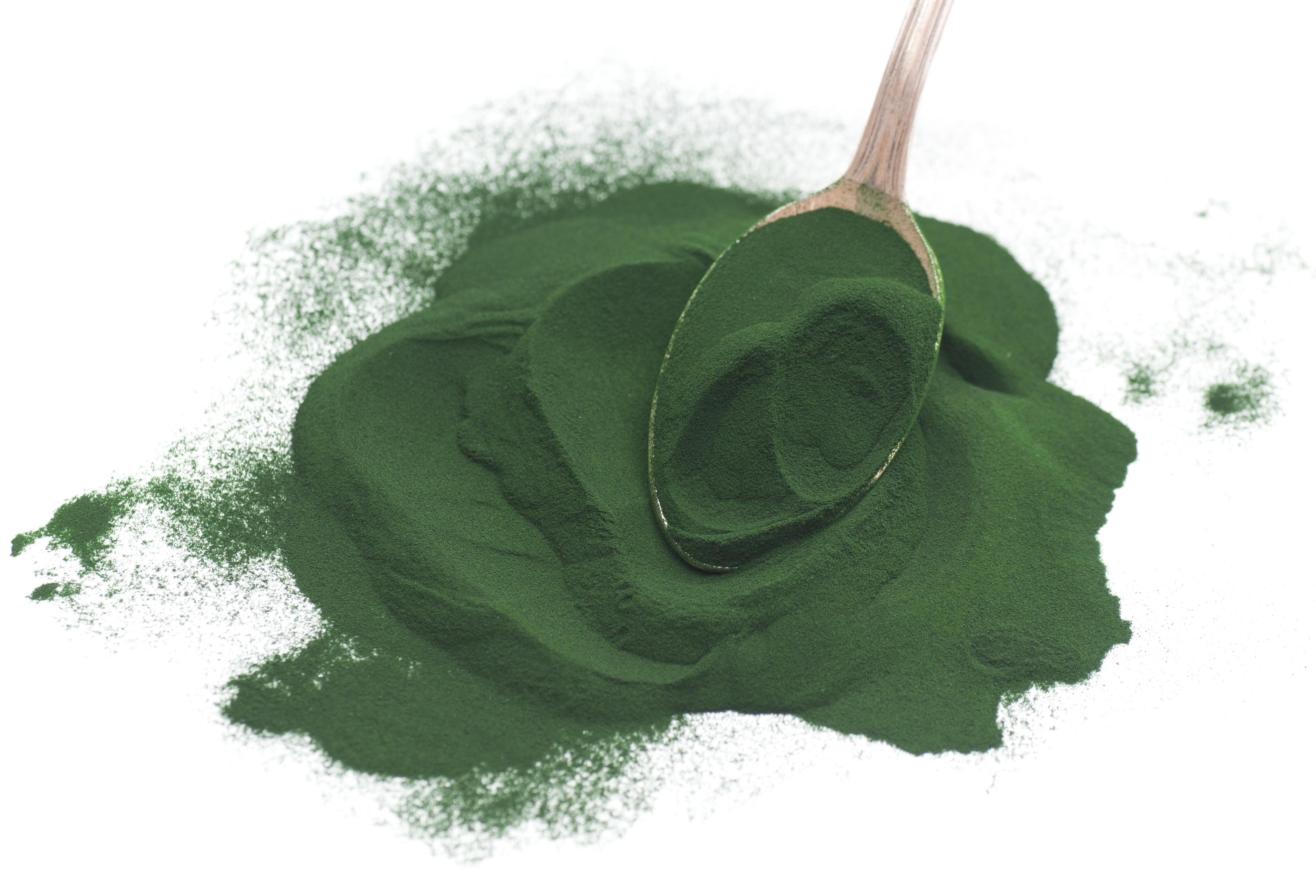 Image result for crushed spirulina powder